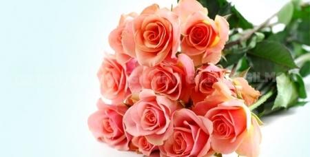 """Тюльпаны, ирисы, розы """"Эквадор"""", орхидеи """"Цимбидиум"""" и букеты на выбор от цветочной лавки """"Лавандыш""""."""