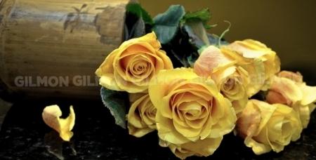 """Дарите любовь! Восхитительные цветы и разнообразные букеты от салона цветов и подарков """"Дон Пион""""."""